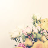 Defocus pastel bunch of roses Stock Photography