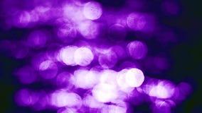 defocused圣诞灯美好的魅力bokeh在紫罗兰树荫下  免版税库存照片