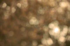 Defocused предпосылка светов Стоковые Фотографии RF