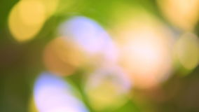 Defocused abstract background with green leaves and bokeh lights. stock video footage