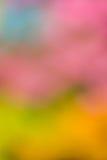 Defocused abstracte kleurrijke achtergrond Stock Afbeeldingen