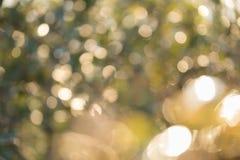 Defocused abstrakcjonistyczny naturalnego światła tło fotografia stock