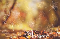 Defocused autumn background with leaves. Vector royalty free illustration