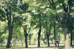 Defocused background of park in spring or summer season Royalty Free Stock Image