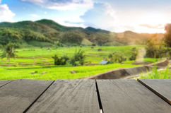 Defocused and blur image of Rice terrace field and sunset time f. Or background usage Stock Photography