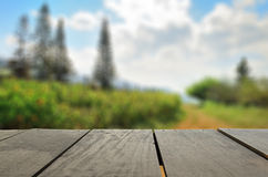 Defocused and blur image of terrace wood and beautiful garden pa. Defocus and blur image of terrace wood and beautiful garden park for background usage Royalty Free Stock Images