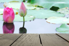 Defocused and blur image of terrace wood and Pink fresh lotus bu. D flower in pond for background usage Royalty Free Stock Images