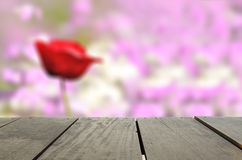 Defocused and blur image of terrace wood and rose Flower. In meadow for background usage Royalty Free Stock Photos