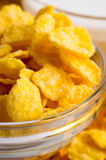 Defocused and blurred image of dry corn flakes Royalty Free Stock Photo