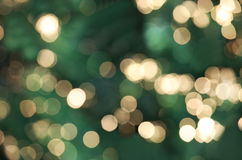 Defocused Christmas lights. Against green tree Stock Photography