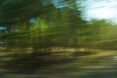 Defocused forest with motion blur effect Stock Photos