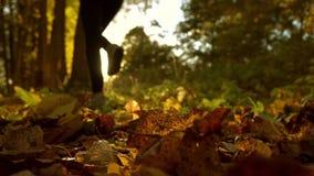 Defocused girl running on fallen autumn leaves in sunny forest. Blazing sun. Super slow motion background bokeh shot stock video
