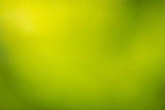 Defocused grön naturabstrakt begreppbakgrund Royaltyfri Bild