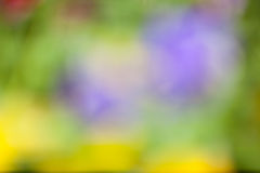 Defocused lata tło Obraz Royalty Free