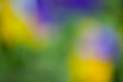 Defocused lata tło Obrazy Royalty Free