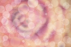 Defocused pink rose background with blurred bokeh. Royalty Free Stock Photo