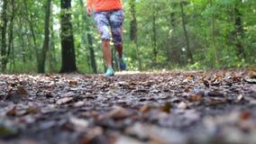 Defocused Rüttler, der durch Wald im Herbst läuft stock video footage