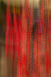 Defocused red lights Stock Photography