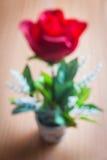 Defocused red rose Royalty Free Stock Images