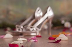Defocused silver womans shoes with petals Royalty Free Stock Photo