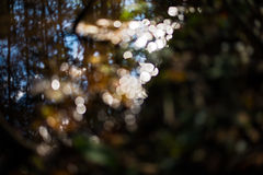 Defocused sun rays abstract Stock Photo