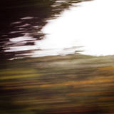 Defocused trees viewed through a car windscreen. Stock Image