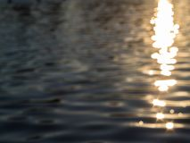 Water surface with gold sunset reflections royalty free stock image