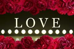 爱与红色玫瑰花背景光灌木和戏剧的卡片在defocusing的迷离被带领的灯的 免版税库存照片