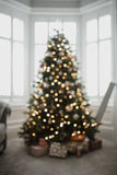Defocussed christmas tree Stock Photography
