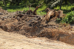 Deforest for road construction. Deforest for road construction have environmental impact Stock Photo