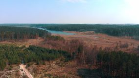 deforestated区域鸟瞰图沿河的 股票录像