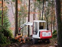 Deforestation Royalty Free Stock Photo