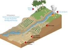 deforestation vektor illustrationer