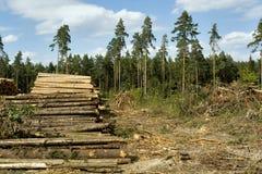 deforestation imagen de archivo