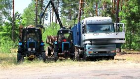Deforestation and automated loading onto a truck vehicle