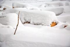deforestation Colheita da madeira serrada Registros sob a neve Estoque da madeira em montes de neve do inverno da floresta imagens de stock royalty free