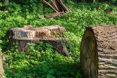 deforestation imagens de stock