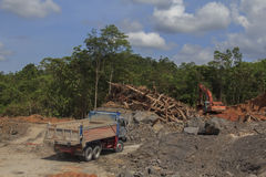 Deforestation environmental problem Royalty Free Stock Photo