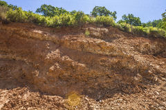 Deforestation and erosion Royalty Free Stock Photos