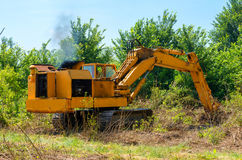 Deforestation of forest. Excavator used to dig up tree-stumps and roots after the forest was removed Royalty Free Stock Image