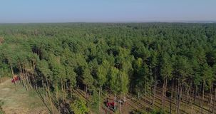 Deforestation special equipment, view from the drone. The work of forest harvesters. Felling of thick pine forest