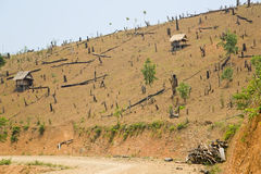 Deforestation in Laos, Cutting Rainforest, Naked Earth Royalty Free Stock Photography