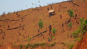 Deforestation in Laos,Cutting Rainforest,Naked Earth stock footage
