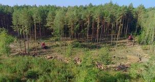 Deforestation, red forest harvester