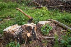 Deforestation. Tree stump, axe, firewood Stock Photos