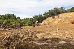 Deforestation in a tropical rainforest. Deforestation in a tropical forest in Malaysia Stock Photos