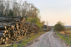 Deforestation. Wood stockpile. Kaluga region, Russia Stock Photos