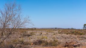 Deforested Land In Australia. Australian land devastated by deforestation for cattle grazing stock photos