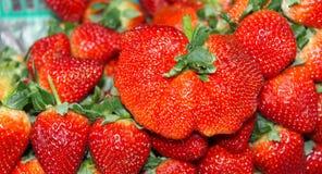Deform strawberry Royalty Free Stock Photo