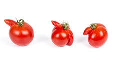 Deformed red tomatoes on a white background Stock Image